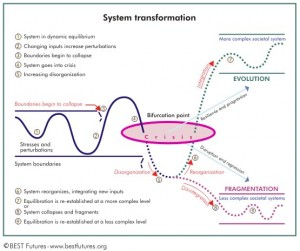 Systemic_Transformation